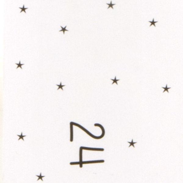 sparkleers silver